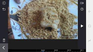 PAANO GUMAWA NG TIKOY CHOCHO /HOW TO MAKE TIKOY WITH CHOCHO PEELING
